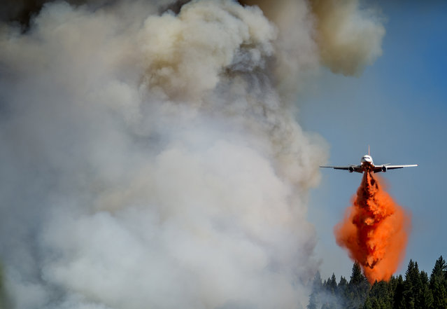 A jet drops retardant on the King Fire near Fresh Pond, California September 16, 2014. More than 1,000 firefighters were battling the 8,600-acre blaze in dense forest and steep terrain in El Dorado County. (Photo by Noah Berger/Reuters)