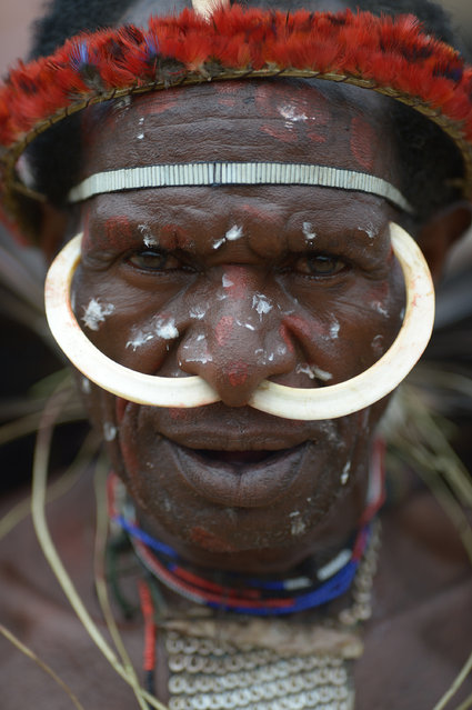 A Dani tribe man participates in a mock tribal war in Walesi district in Wamena, Papua Province on August 8, 2016.  The performances at the 27th Baliem valley festival, featuring highland tribes of Dani, Yali and Lani in their mock battles as symbol of high spirit and power that have been practised for generations, is held in Wamena on August 8 – 10. (Photo by Adek Berry/AFP Photo)