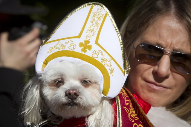 A woman poses with her dog dressed as the pope during the 24th Annual Tompkins Square Halloween Dog Parade in New York October 25, 2014. (Photo by Carlo Allegri/Reuters)