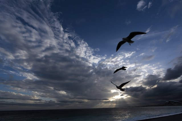 Seagulls fly above the beach in Nice following heavy rains which hit southern France November 28, 2014. (Photo by Eric Gaillard/Reuters)