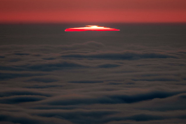 The sun rises through the thick fog over Frankfurt, Germany, Thursday, November 26, 2020. (Photo by Michael Probst/AP Photo)
