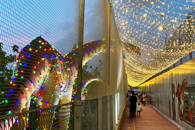 People visit the dinosaurs exhibits along the Changi Jurassic Mile as it is light up for Christmas near Changi airport in Singapore on December 8, 2020. (Photo by Tim Chong/Reuters)