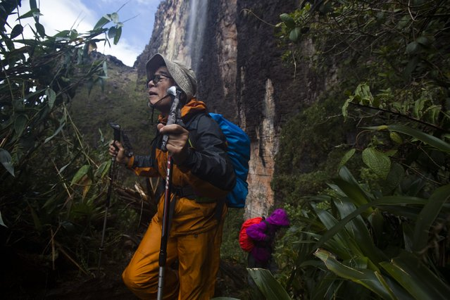 Japanese tourists walk down from the top of Roraima Mount, near Venezuela's border with Brazil January 18, 2015. (Photo by Carlos Garcia Rawlins/Reuters)
