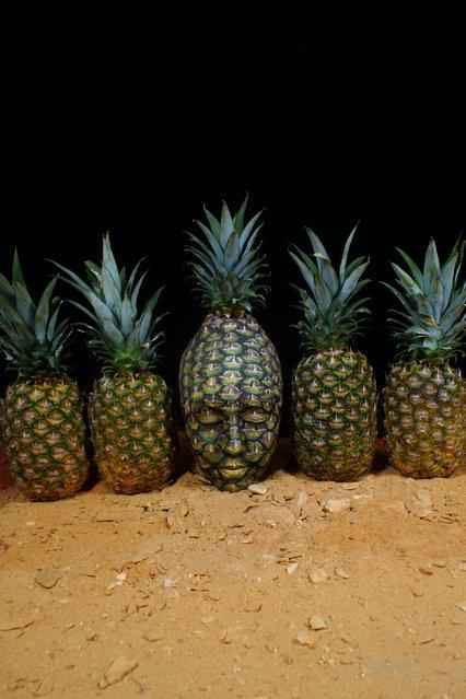 """Pineapple"". (Photo by Johannes Stötter)"