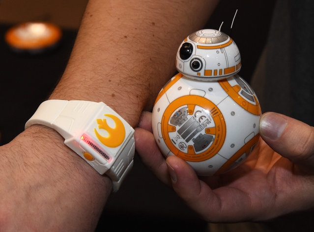 """Sphero's BB-8 technical prototype with Force Band is displayed during a press event for CES 2016 at the Mandalay Bay Convention Center on January 4, 2016 in Las Vegas, Nevada. Sphero partnered with Lucasfilm to build the USD 150, app-enabled toy from the droid character in the film """"Star Wars: The Force Awakens."""" It can be controlled using Bluetooth by a smartphone or the Force Band and features gesture-based technology enabling users to control it with Jedi-like movements. (Photo by Ethan Miller/Getty Images)"""