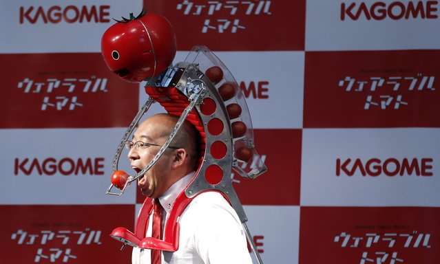 "Kagome Co's employee Shigenori Suzuki tries to eat a tomato which is fed to him by the newly-developed ""Wearable Tomato"" device for runners, during its unveiling event ahead of the weekend's Tokyo Marathon in Tokyo February 19, 2015. (Photo by Toru Hanai/Reuters)"