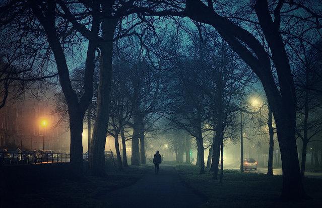 """""""An evening stroll in the Meadows park, Edinburgh"""". (Photo by Tamás Kátai/The Guardian)"""