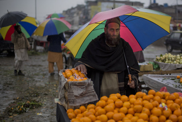 A Pakistani vendor waits in the rain for customers, in Islamabad, Pakistan, Tuesday, February 24, 2015. (Photo by B. K. Bangash/AP Photo)