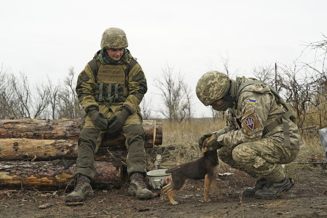 Ukrainian soldiers pet a puppy as they control an area near the frontline with Russia-backed separatists in Shyrokyne, eastern Ukraine, Wednesday, November 28, 2018.  Russia and Ukraine are still reeling from their first overt military confrontation since the 1991 collapse of the Soviet Union, a clash Sunday in the Kerch Strait near Russia-occupied Crimea where Russian border guards fired on three Ukrainian ships, seizing them and their 24 crew members. (Photo by Evgeniy Maloletka/AP Photo)