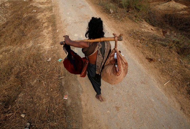 A snake charmer carries snake pots and his belongings as he returns home after a month-long trip in Jogi Dera (snake charmers settlement), in the village of Baghpur, in the central state of Uttar Pradesh, India, January 16, 2017. (Photo by Adnan Abidi/Reuters)