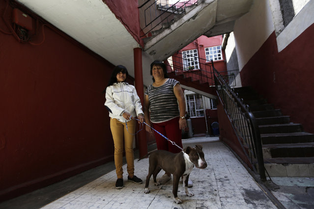 Rosaura Realsola, 51, poses for a photograph with her daughter Alexandra Yamileth, 13, in front of their home in Tepito in Mexico City February 20, 2014. Rosaura is a domestic cleaner, who finished her education at age 16. She says that when she was a child, she wanted to be a teacher when she grew up. Rosaura hopes that her daughter Alexandra will become a nurse. Alexandra will finish education in 2023 and says she wants to be a nurse when she grows up. (Photo by Henry Romero/Reuters)