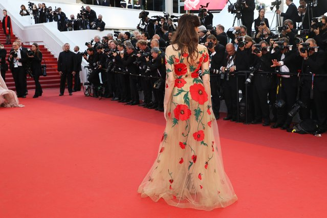 "Frederique Bel attends the ""Julieta"" premiere during the 69th annual Cannes Film Festival at the Palais des Festivals on May 17, 2016 in Cannes, France. (Photo by Andreas Rentz/Getty Images)"