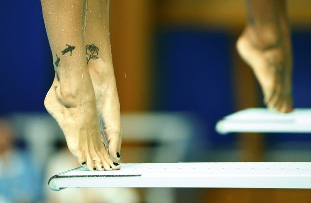 Tatoos are pictured on the legs of Canada's Pamela Ware during the women's synchronized 3m springboard final at the Aquatics World Championships in Kazan, Russia, July 25, 2015. (Photo by Hannibal Hanschke/Reuters)