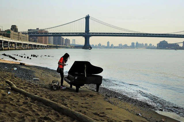 A woman inspects a piano underneath the Brooklyn Bridge in New York City (The Manhattan bridge is seen in the background), on June 3, 2014. A grand piano that mysteriously landed on a sliver of beach under the iconic bridge last week has become an impromptu tourist attraction. While the Mason & Hamlin piano is badly damaged, dozens of people climb onto the beach daily to test out the keys. (Photo by Spencer Platt/Getty Images)