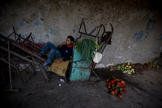 In this May 31, 2016 photo, Antonio Gutierrez who works driving a cart rests next to vegetables and fruits he and a friend collected from the trash of the Coche public market in Caracas, Venezuela. While some search through the garbage piles for food they can eat, many more are drawn by the opportunity to fetch a few bolivar bills by rescuing and reselling bruised produce. (Photo by Fernando Llano/AP Photo)