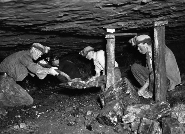 Low gallery far beneath the earth's surface, with intrepid miners searching for coal somewhere in England, on June 10, 1938. (Photo by AP Photo)