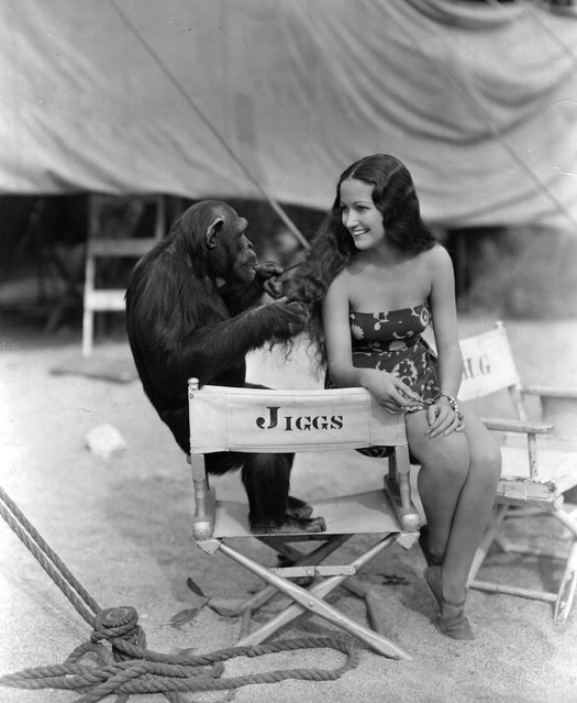 """Dorothy Lamour (1914–1996), playing with """"Jiggs"""" the screen chimpanzee, while on location in Palm Springs for the filming of """"Her Jungle Love"""", a Paramount production, circa 1937.  (Photo by Hulton Archive)"""