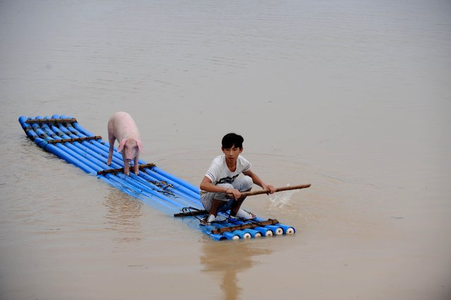 A victim makes his way through flood water on a makeshift raft in Lishui, east China's Zhejiang province on August 20, 2014, after days of heavy rainfall. More than 20,000 residents have been evacuated due to the flood as the water level in Ou river keeps rising during the storms, local media reported. (Photo by AFP Photo)