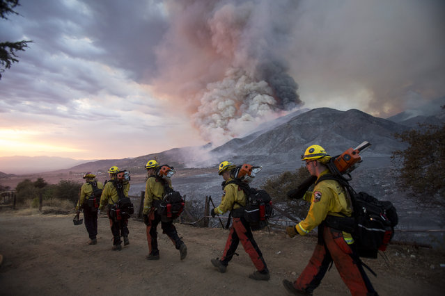 Members of firefighters walk in line during a wildfire in Yucaipa, Calif., Saturday, September 5, 2020. Three fast-spreading California wildfires sent people fleeing Saturday, with one trapping campers at a reservoir in the Sierra National Forest, as a brutal heat wave pushed temperatures into triple digits in many parts of state. (Photo by Ringo H.W. Chiu/AP Photo)