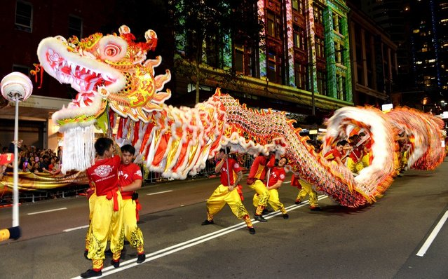 A dragon entertains the crowds at the Chinese New Year parade in Sydney on February 17, 2013.  The parade featured more than 3,500 performers from Australia and China, including 120 performers from Shenzhen, Sydney's offical partner city for this year's festival. (Photo by William West/AFP Photo)