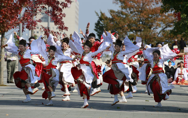 Participants perform as they parade through Tokyo streets during an annual Yosakoi festival in Tokyo, Sunday, November 6, 2016. Yosakoi is a unique and modern rendition of the popular traditional Japanese dance of Awa Odori and many troupes compete with their choreographed dance in colorful costumes, performed often with the Japanese instrument of Naruko, a clapper held in both hands. (Photo by Shizuo Kambayashi/AP Photo)