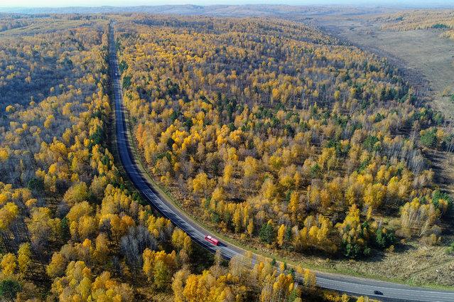 "Vehicles drive along the ""Yenisei"" highway across taiga in autumn foliage in the Krasnoyarsk region, Siberia, Russia, September 29, 2018. (Photo by Ilya Naymushin/Reuters)"