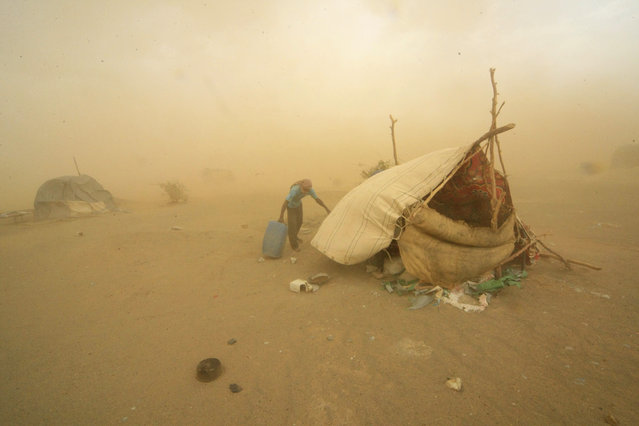A gold mine worker takes shelter from a sandstorm in Al-Ibedia locality at River Nile State, Sudan July 30, 2013. (Photo by Mohamed Nureldin Abdallah/Reuters)