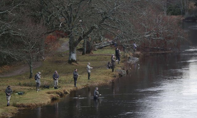 Anglers cast their lines on the opening day of the salmon fishing season on the River Tay at Kenmore in Scotland, Britain January 16, 2017. (Photo by Russell Cheyne/Reuters)