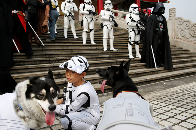 A child dressed as a Storm Trooper from Star Wars plays with dogs during Star Wars Day in Taipei, Taiwan, May 4, 2016. (Photo by Tyrone Siu/Reuters)