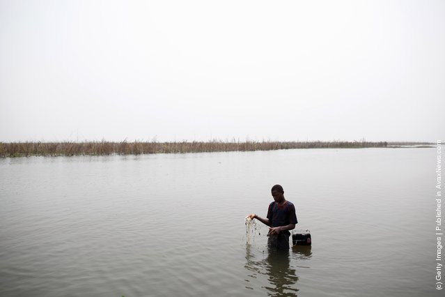 A boy fishes with a net in the lagoon on January 6, 2012 in Ganvie, near Cotonou, Benin