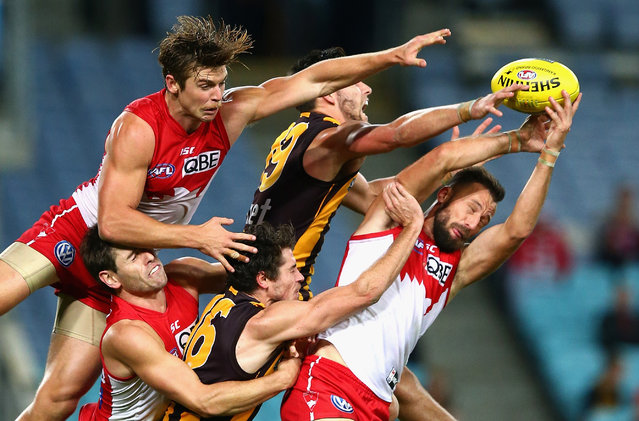 Nick Malceski and Dane Rampe of the Swans competes for the ball against Jack Gunston and Isaac Smith of the Hawks during the round eight AFL match between the Sydney Swans and the Hawthorn Hawks at ANZ Stadium on May 9, 2014 in Sydney, Australia.  (Photo by Ryan Pierse/Getty Images)