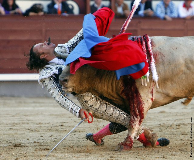 Gustavo Cuevas of Spain was honored for his photo of Spanish bullfighter Julio Aparicio being gored