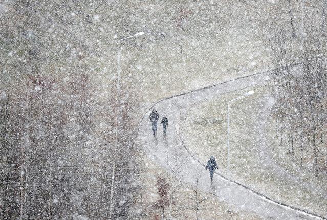 People walk during heavy snowfall in Minsk, Belarus on February 12, 2020. (Photo by Vasily Fedosenko/Reuters)