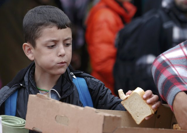 A boy grabs a piece of bread as he arrives at the Austrian train station of Nickelsdorf to board a train to Germany, September 5, 2015. (Photo by Heinz-Peter Bader/Reuters)