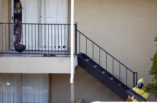 Neighbors watch a man in a hazardous material suit work on cleaning the apartment unit where a man diagnosed with the Ebola virus was staying in Dallas, Texas, in this October 6, 2014 file photo. (Photo by Jim Young/Reuters)