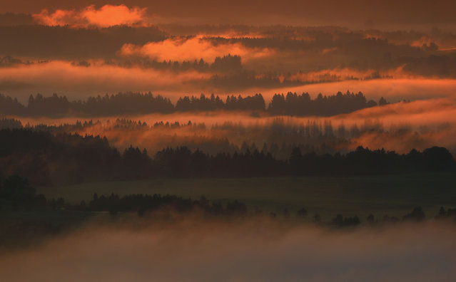 Morning fog is dipped in red during sunrise in the Prealpine Land near Bernbeuren, Germany, 30 August 2016. (Photo by Karl-Josef Hildenbrand/AFP Photo/DPA)