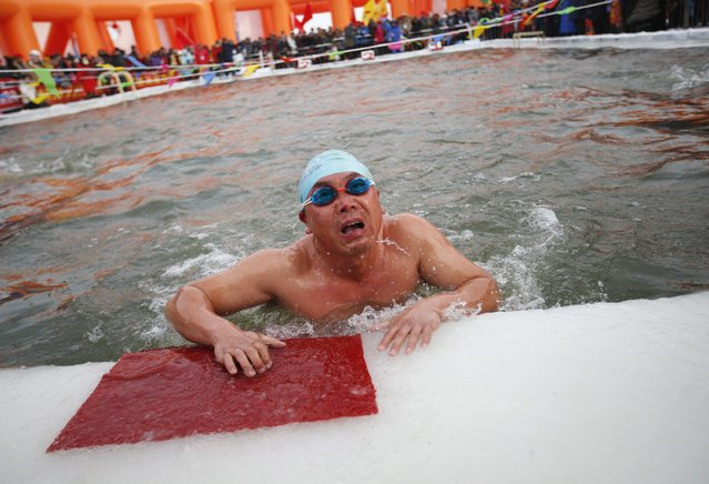 A swimmer reacts after finishing his competition in a pool carved into thick ice covering the Songhua River during the Harbin Ice Swimming Competition in the northern city of Harbin, Heilongjiang province January 5, 2015. The swimming competition was held on the official launch day of the Harbin International Ice and Snow Sculpture Festival. (Photo by Kim Kyung-Hoon/Reuters)