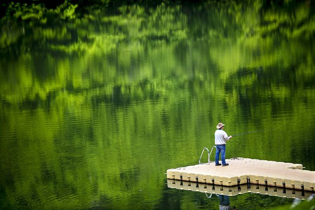 An angler stands on a bathing platform at lake Twistesee where the green surroundings is reflected near Wetterburg, central Germany, on May 19, 2014. (Photo by Uwe Zucchi/DPA)