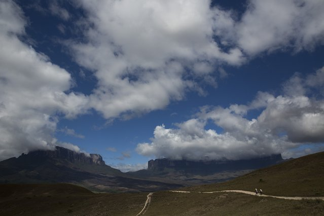 Pemon indigenous porters walk on the road to Mount Roraima, near Venezuela's border with Brazil January 13, 2015. (Photo by Carlos Garcia Rawlins/Reuters)