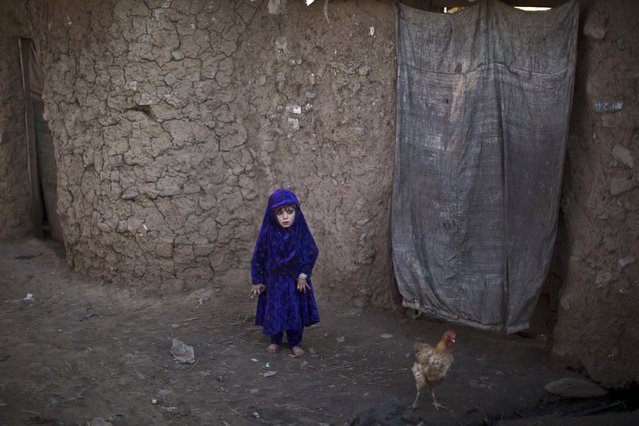 An Afghan refugee child stands outside her family's mud home in a slum on the outskirts of Islamabad, Pakistan, Wednesday, February 4, 2015. (Photo by Muhammed Muheisen/AP Photo)