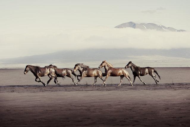 """Runners"". (Photo by Gigja Einarsdottir)"
