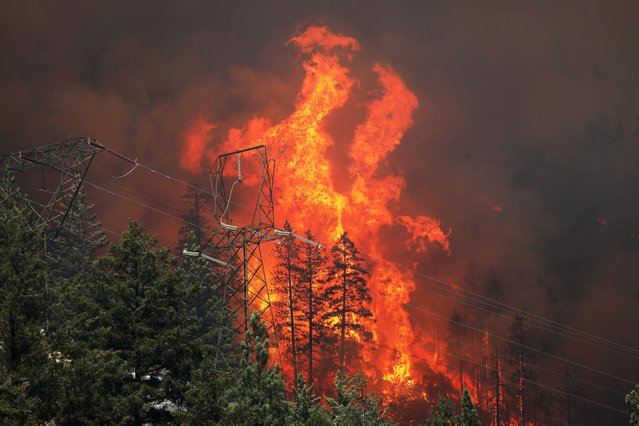 Power lines are framed by flames as the Dixie Fire grows in Plumas National Forest, California, U.S., July 15, 2021. (Photo by David Swanson/Reuters)