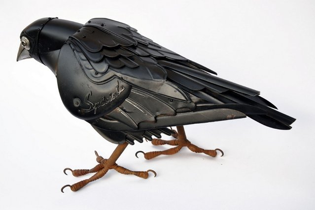 Raven by by Edouard Martinet. (Photo by Edouard Martiniet/Caters News)