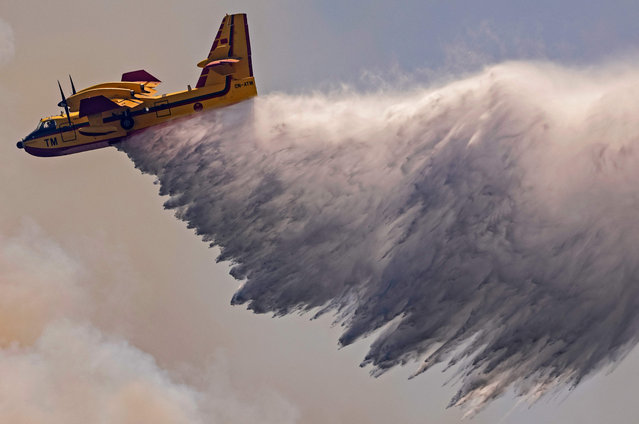 A Royal Moroccan Air Force Canadair plane douses a wildfire in the region of Chefchaouen of northern Morocco on August 17, 2021. Firefighters in northern Morocco are battling to put out two forest blazes, a forestries official said as the North African kingdom swelters in a heatwave. Firefighting planes were being used to tackle the conflagrations which had already destroyed some 200 hectares (500 acres) of forest. (Photo by Fadel Senna/AFP Photo)