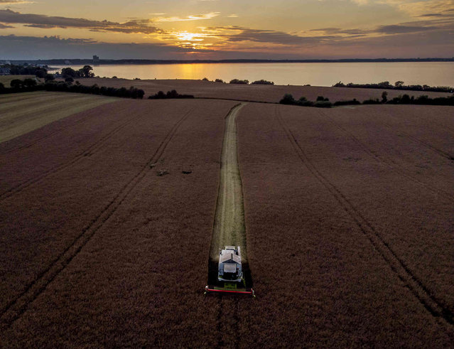 A farmer harvests a field above the Baltic Sea in Travemuende, Germany, as the sun sets on Friday, July 30, 2021. (Photo by Michael Probst/AP Photo)