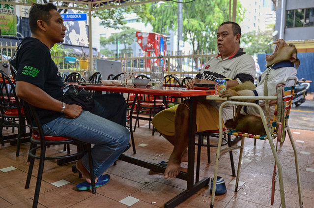 "This photo taken on April 25, 2015 shows Jamil Ismail (Jamilkucing), 45, (C) talking to a friend as his male monkey named ""JK"" (R) yaws during their lunch at a restaurant in Kuala Lumpur. (Photo by Mohd Rasfan/AFP Photo)"