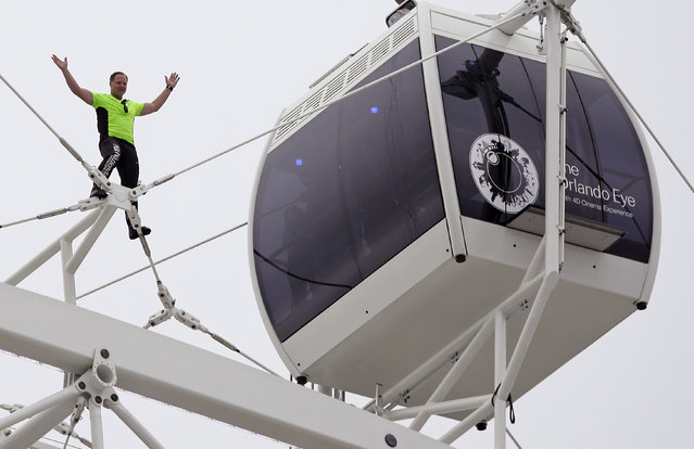 Daredevil performer Nik Wallenda waves to a crowd below after he walked untethered along the rim of the Orlando Eye, the city's new, 400-foot observation wheel, Wednesday, April 29, 2015, in Orlando, Fla. (Photo by John Raoux/AP Photo)
