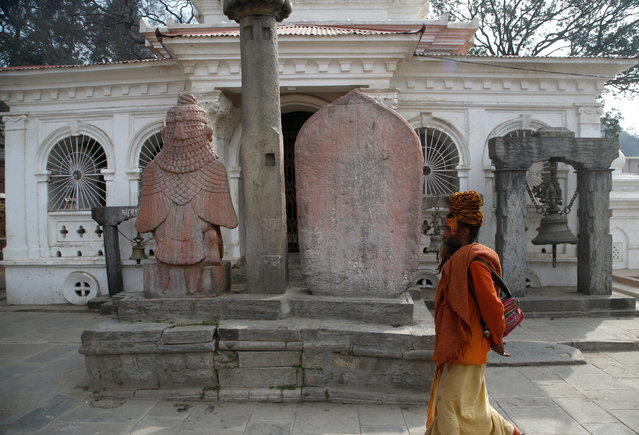 A Hindu holy man, or sadhu, walks at the premises of Pashupatinath Temple, ahead of the Shivaratri festival in Kathmandu, Nepal February 15, 2017. (Photo by Navesh Chitrakar/Reuters)