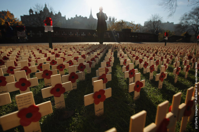 Scotlands First Field Of Remembrance Opens Ahead Of Armistice Day