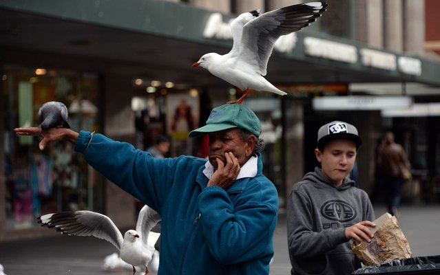 A man feeds birds in the central business district of Sydney on July 7, 2015. Australia's central bank on July 7 kept interest rates on hold at 2.0 percent for the second-straight month, saying accommodative monetary policy was needed with economic growth subdued. (Photo by Saeed Khan/AFP Photo)